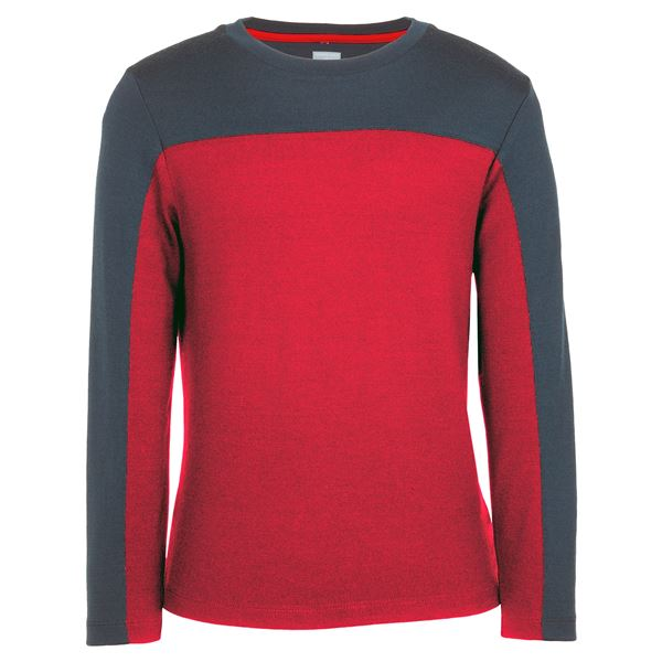 Icebreaker Bodyfit 260 Fervor Base Layer Top - Merino Wool, UPF 30+, Long Sleeve (For Kids)