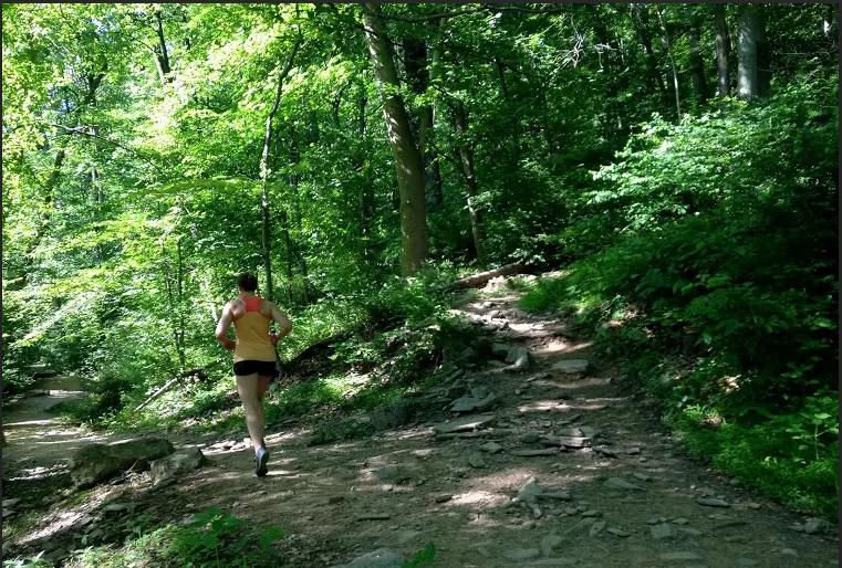 beginning trail running
