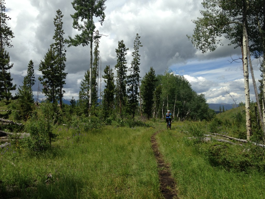 Even in the summer, you can enjoy a ski hill! Trestle MTB Park at Winterpark, just outside of Denver, is one place to try.