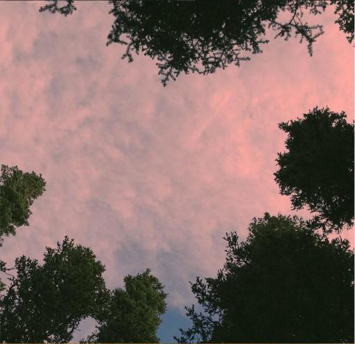 Outdoor Photography Blog Photo 1