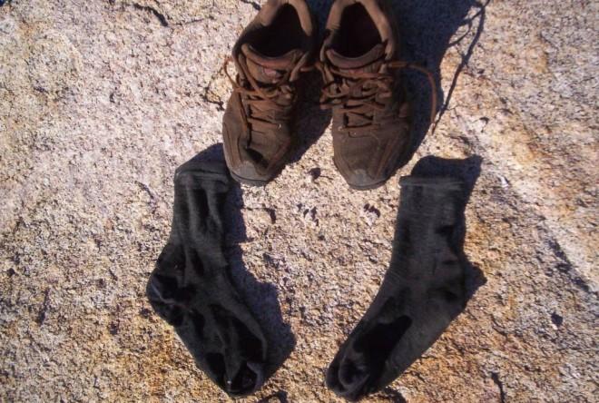 Rock McCharles Sock pic