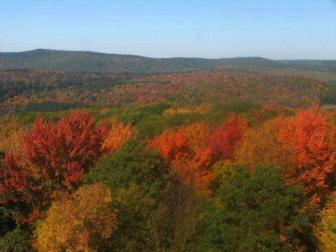 Kennedy, Pennsylvania Fall Colors