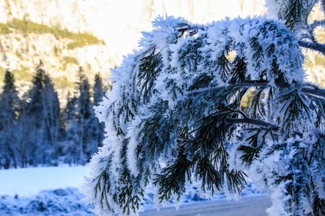 Winter photos-2