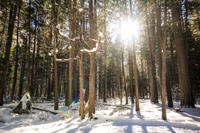 Winter photos-3