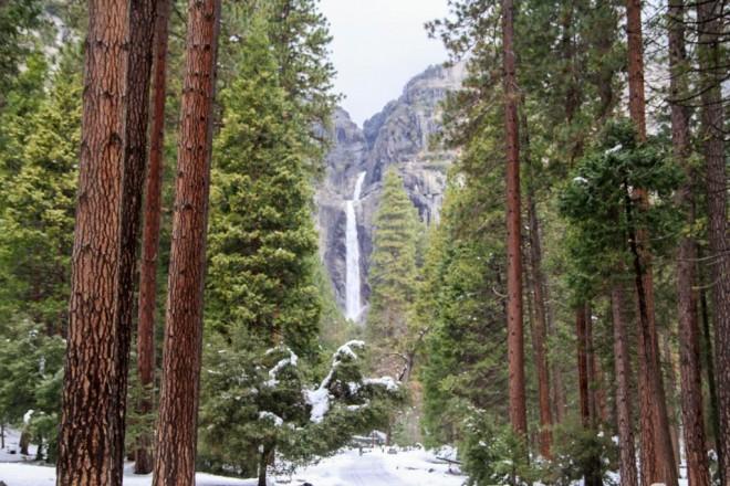 Winter photos-6