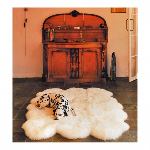 Sheepskin Rugs Sierra Trading Post