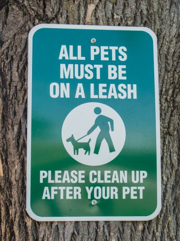 Dogs Leave No Trace