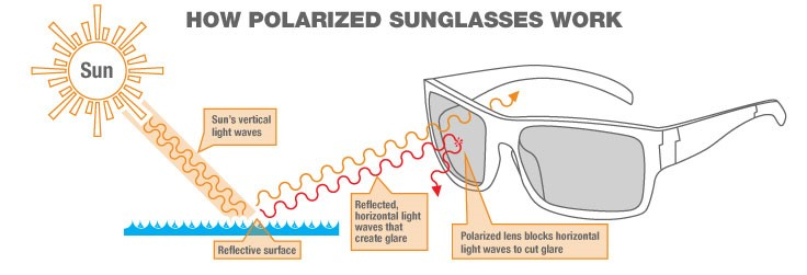 what is polarised sunglasses  What are Polarized Sunglasses?
