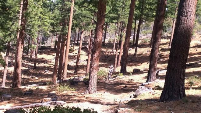 Hydrate mountain biking