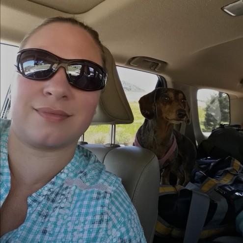 Dog Travel Road Trip