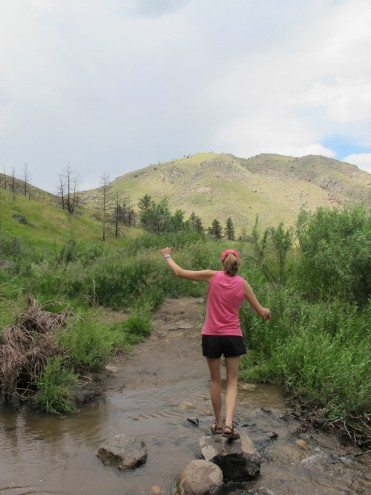 Dog Friendly Hikes Fort Collins