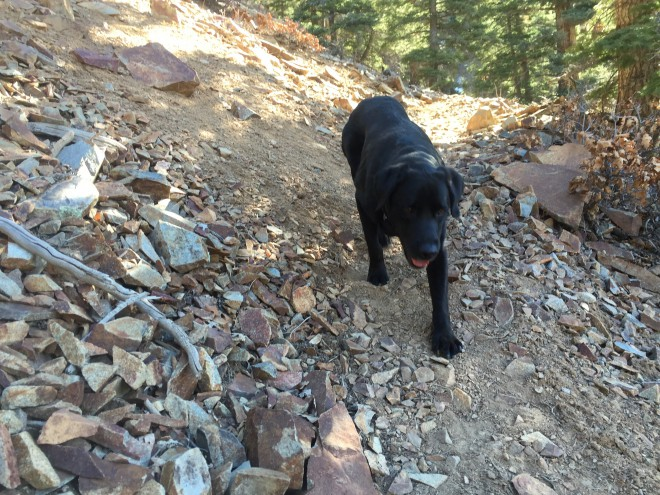 Old Horsethief Trail in Ouray, Colorado | Photo Credit Beth Lakin