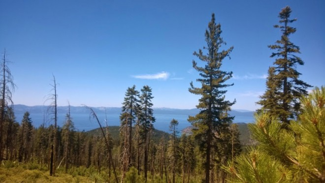 Tahoe Rim Trail Lake Tahoe Hikes
