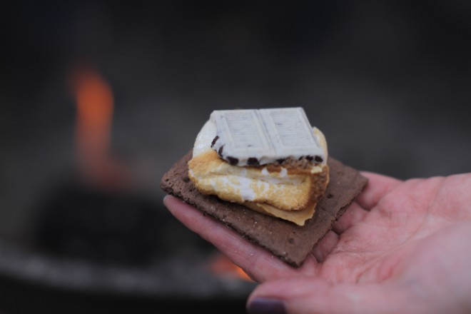 Cookies and Cream s'more recipes