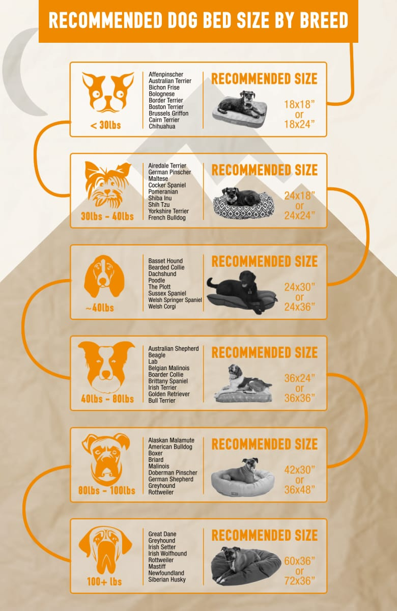 Dog Bed Sizing Chart