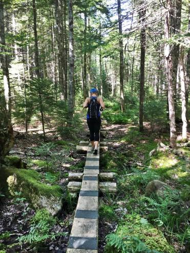 be a good trail steward