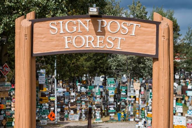 Alaska Highway Sign Post Forest