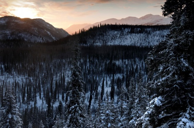 Photo Credit: Denali National Park and Preserve