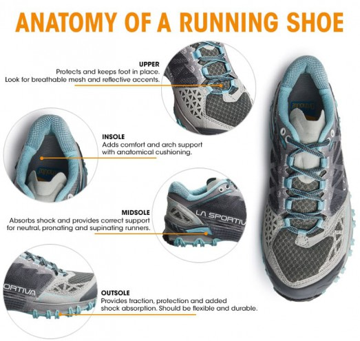Running Shoe Anatomy, Explained | Sierra Trading Post Blog