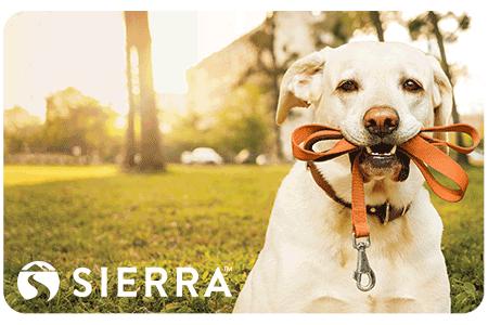 Sierra Gift Cards