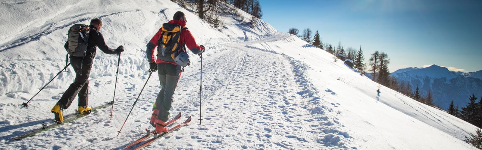 How to Choose Nordic Skis