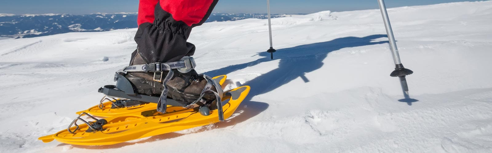 The Snowshoes Guide: Sierra Trading Post