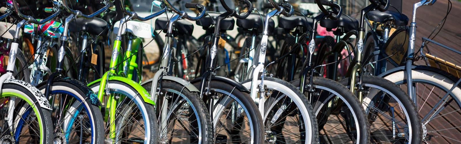 The Bike Fit Guide: Sierra Trading Post