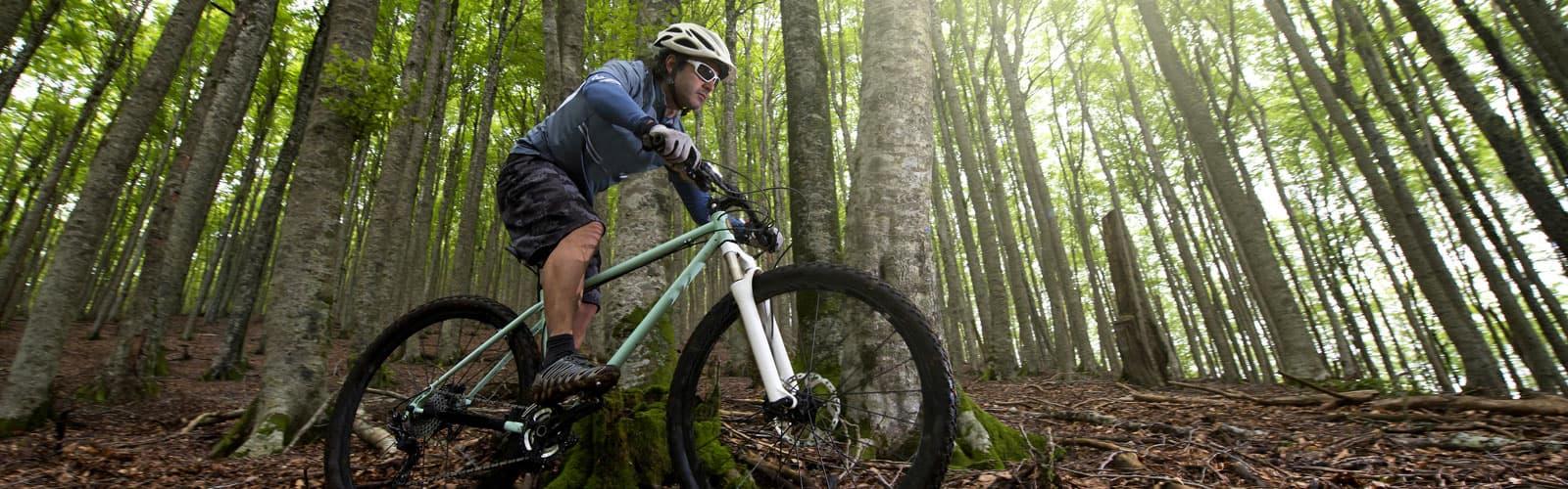 Mountain Bike and Commuter Bike Fit