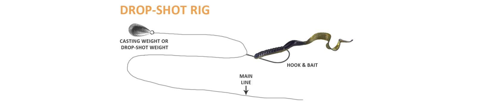 Drop-Shot Rig Diagram