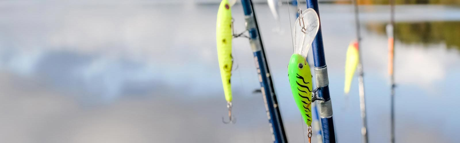 The Fishing Bait and Lures Guide: Sierra