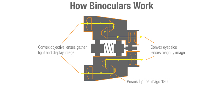 How Binoculars Work