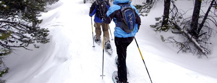 The Snowshoe Buying Guide