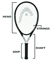 Racquets Anatomy
