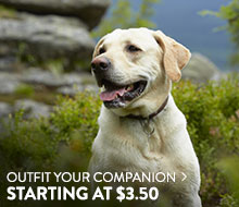 Pet - starting at $3.50