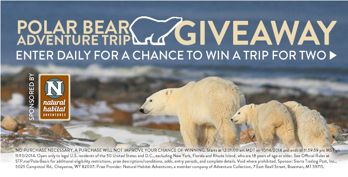 Polar Bear Adventures Giveaway