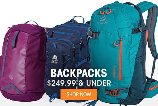 Backpacks - $249.99 & Under