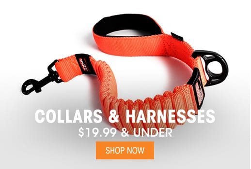 Collars & Harnesses - $19.99 & Under