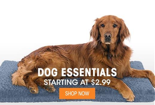 Dog Essentials - Starting at $2.99