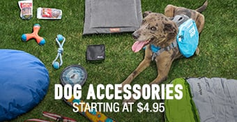 Dog Accessories - starting at $4.95