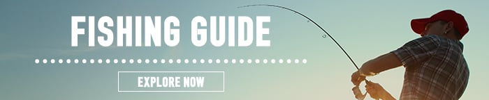 See Our Fishing Guide