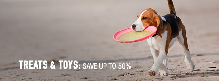 Treats & Toys - save up to 50%