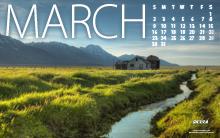 Shelley Hartman, Calendar